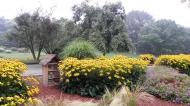 Grugapark7Sept138.jpg
